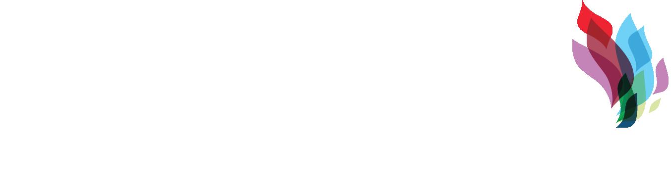 ANA-NNW2019-logo-color-white text-LOCKUP